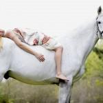 Foto Horses Art