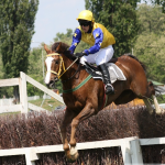 Steeplechase with Ilex The Great