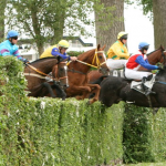 Irish Queen steeplechase race at Pardubice