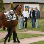 Verdandi paddock, owner Toušek and trainer Holčák