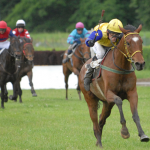 Verdandi by Kahyashi winning race at Pardubice with jockey Havelka