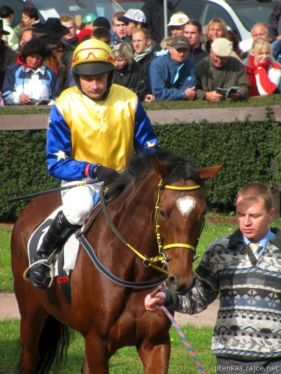 Verdandi s jockeyem M. Stromským