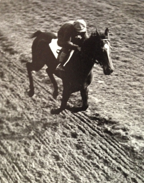pan Stara v tréninku dostihových koní