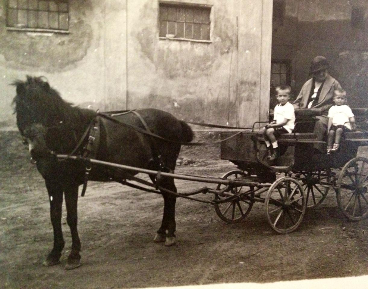 počátky historie rodiny Stárových v Radonicích