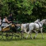 jízda novomanželů kočárem po jezdeckém parku